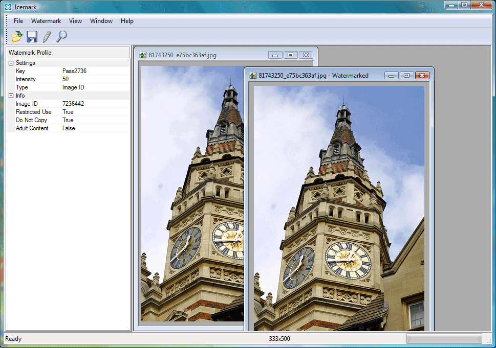 Icemark - software for adding invisible watermarks. Main windows - adding digital watermarks